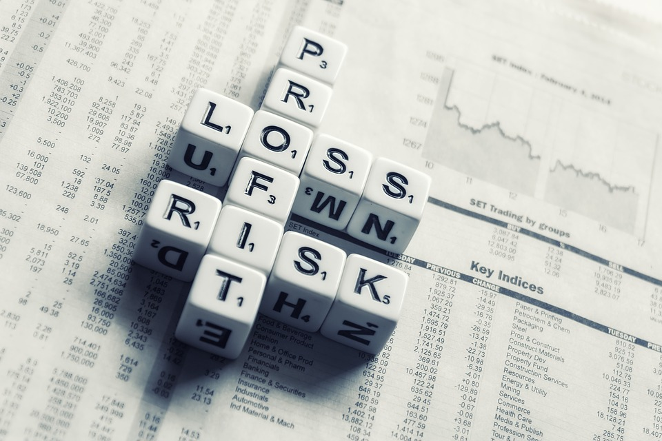 Loss, Risk, Profit