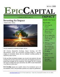 thumbnail of Epic Impact – WINTER 2020