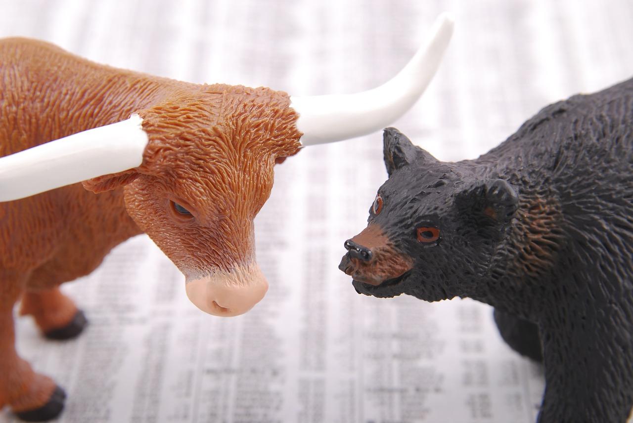 Stock Markets Bear Bull