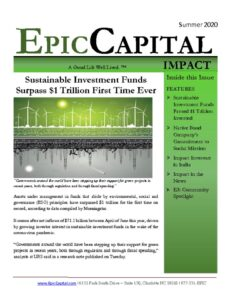 thumbnail of Epic Impact – SUMMER 2020