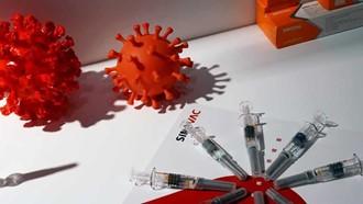 COVID Coronavirus virus vaccine syringe
