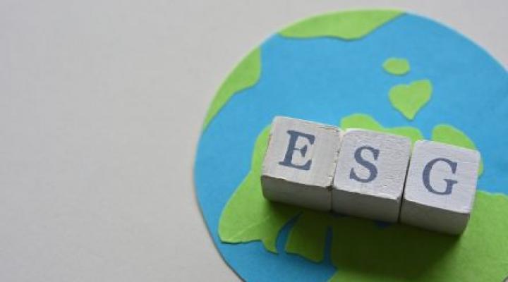 ESG Investing Globe