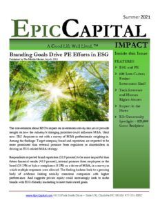 thumbnail of Epic Impact – SUMMER 2021
